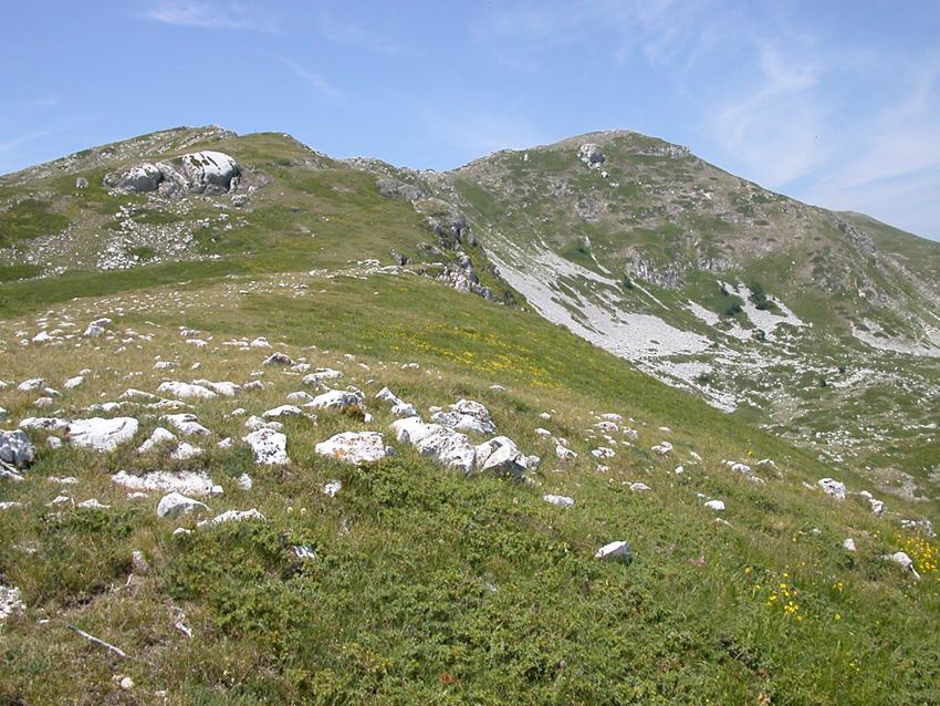 Monte Cava da Corvaro | Escursioni, Sentieri e Trekking nel Lazio