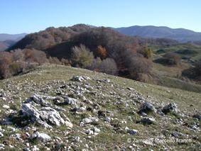 Monte Camposecco da Camerata Nuova | Escursioni, Sentieri e Trekking nel Lazio