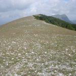 Monte Cervia da Collegiove | Escursioni, Sentieri e Trekking nel Lazio