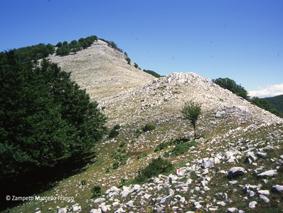 Monte Malaina da Cona di Selvapiana | Escursioni, Sentieri e Trekking nel Lazio