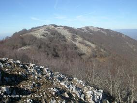 Monte Pellecchia da Monteflavio | Escursioni, Sentieri e Trekking nel Lazio