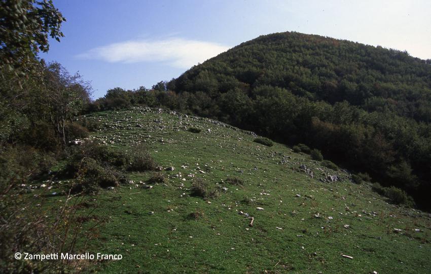 Monte Serrapopolo da Scandriglia | Escursioni, Sentieri e Trekking nel Lazio