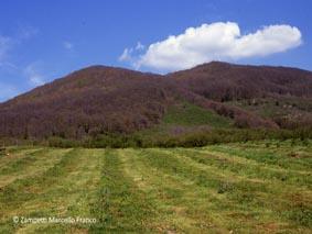 Monte Venere da Caprarola | Escursioni, Sentieri e Trekking nel Lazio