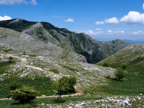 Monte Petrella | Sentieri nel Lazio