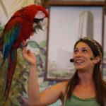 Zoomarine pappagallo