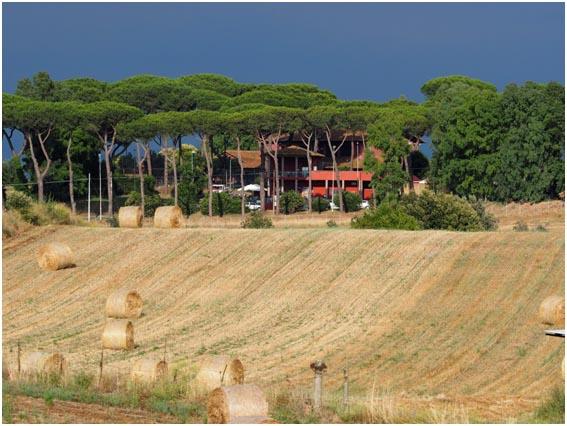 Palio dei Fontanili a Testa di Lepre - Fiumicino (RM) | Feste medievali in Provincia di Roma