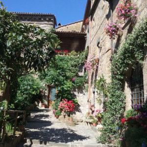Come inserire, segnalare e promuovere un Agriturismo su Lazio Nascosto