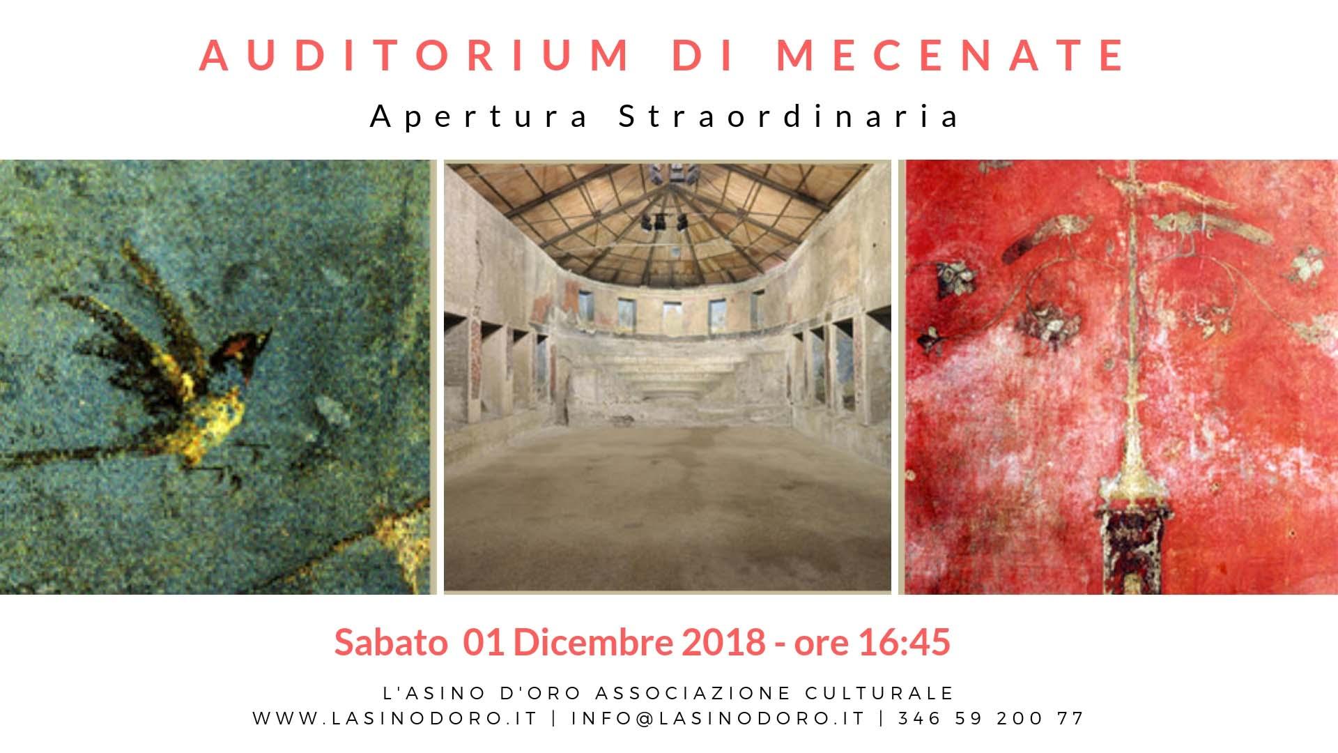 Roma Sotterranea: Auditorium di Mecenate
