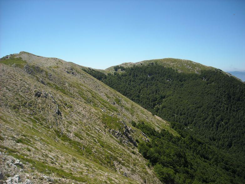 La Monna da Vico nel Lazio | Escursioni, Sentieri e Trekking nel Lazio