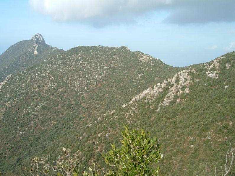 Il Promontorio del Circeo dai pressi dell'Acropoli del Circeo