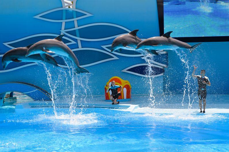Parchi divertimento e parchi tematici del Lazio