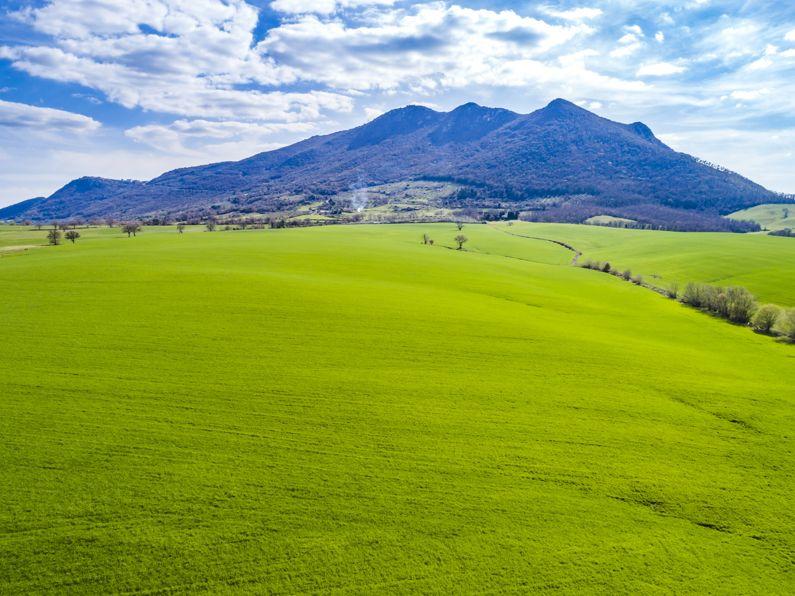 Riserva Naturale Monte Soratte | Guida su cosa vedere