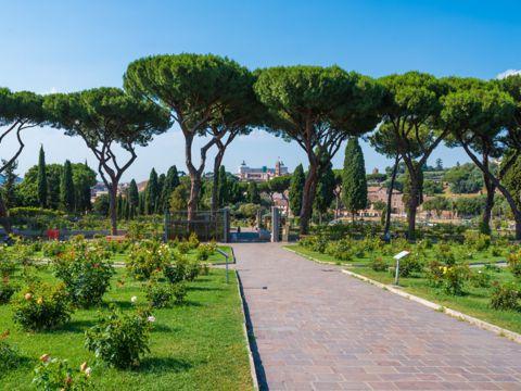 Roseto Comunale di Roma I Giardini Vaticani   Parchi, Ville e Giardini di Roma