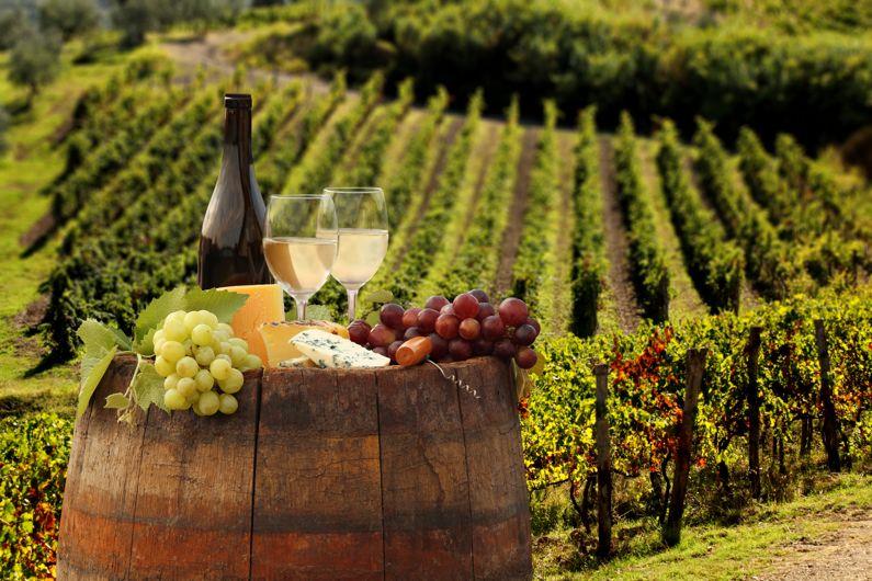 Le Strade del Vino e dei Sapori del Lazio