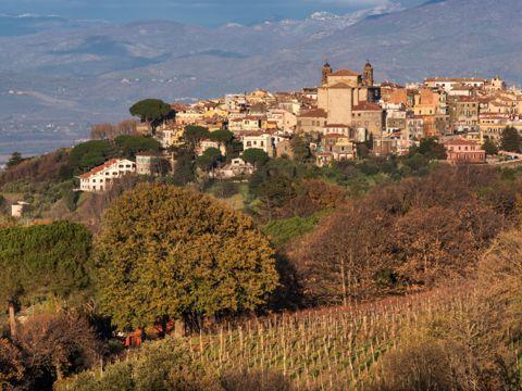 Monte Porzio Catone (RM) | Cosa vedere nel borgo
