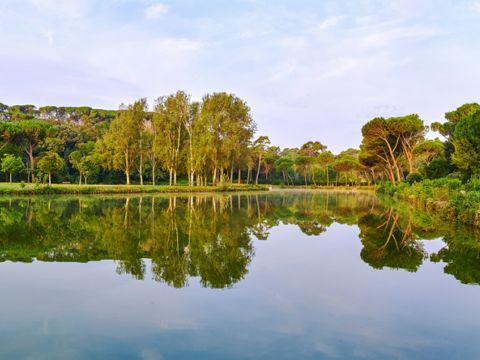 Villa Ada Savoia a Roma | Parchi, Ville e Giardini di Roma