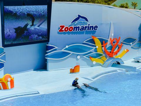 Zoomarine - Torvaianica (RM) | Parchi Divertimento e Parchi Tematici del Lazio