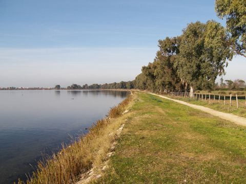 Dai Laghi costieri del Parco Nazionale del Circeo a Ostia Antica (Lago di Fogliano) | Lazio Nascosto