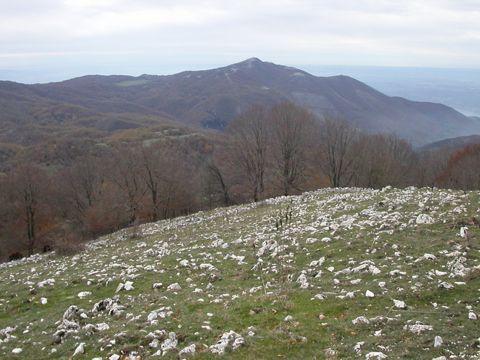Parco Naturale Regionale dei Monti Lucretili - I Parchi Naturali, Riserve e Oasi del Lazio